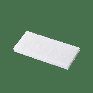 Dinesen vit svamp