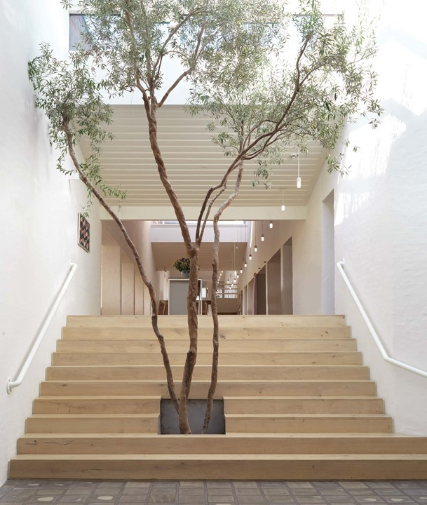 oak-planks-heartoak_treatment-light-oil_kvadrat-hq_stairs_tree_dinesen.jpg
