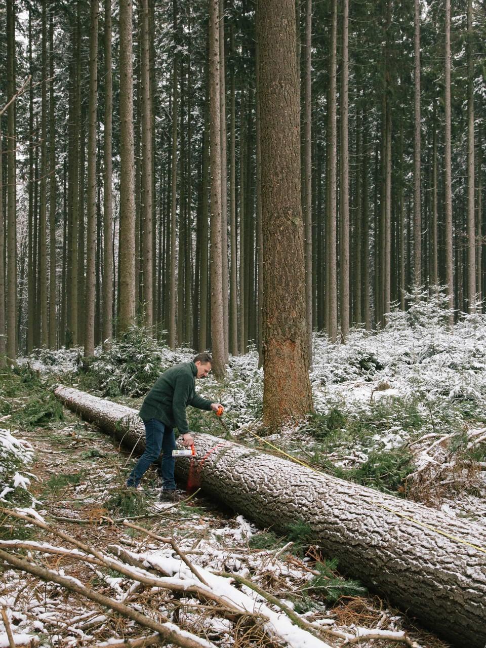 dinesen-wood-forester_john-pawson-chapel_unterliezheim-bayern.jpg